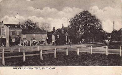 Saracens RFC's new home- the Cherry Tree in 1904
